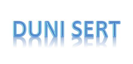 Dunimex - Manutenção de Motores - Duni Sert